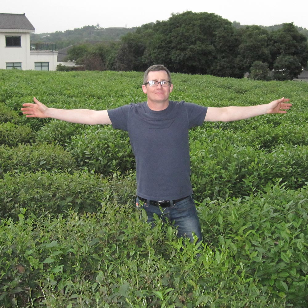 norman_tea_bushes_hangzhou_1000.jpg